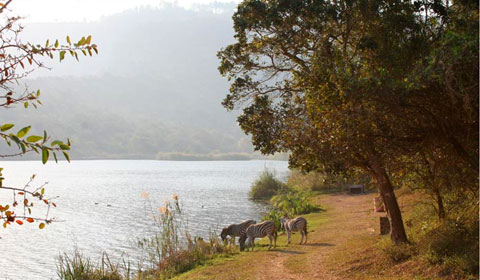The beautiful Shongweni Dam and Game Reserve, where the first half of our week-long training camp for coaches and staff will take place.