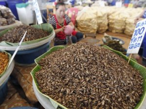 Hong Kong marketplace where vendors sell fried bugs.