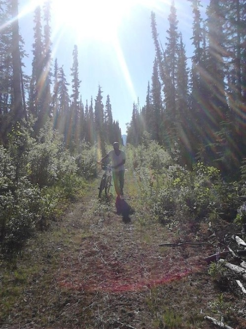 PPI's Intern Desiree Snyder biking through Alaska.