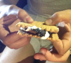 Some of the LDP try s'mores for the first time...Pure magic!