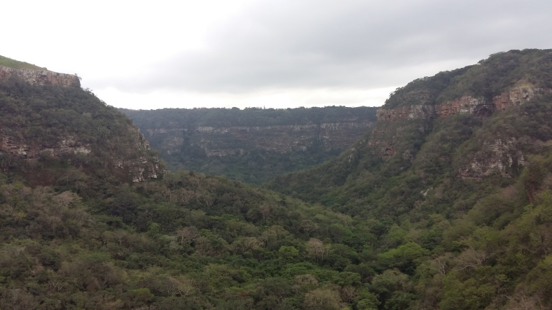The view from the top of Krantzkloof Nature Reserve
